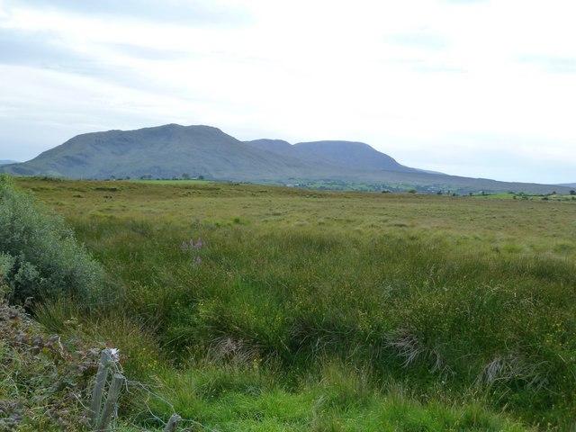 Fertile grassland, looking towards the Sheeffry Hills
