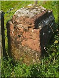 NS3478 : Bench mark, Darleith Road by Lairich Rig