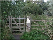 TR1859 : Kissing Gate on the Great Stour footpath by David Anstiss