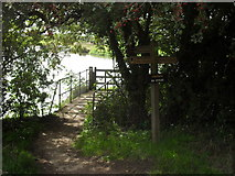SU2598 : Small footbridge on the Thames Path by andrew auger