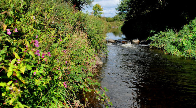 The Enler River, Comber (2)