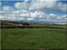 SK2055 : Access Land near Blackstone's Low by Jonathan Clitheroe