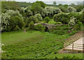 ST7560 : Disused Canal Bridge west of Midford by Rick Crowley