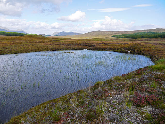 Moorland Lochan