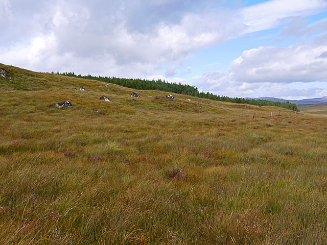 Moorland and old fence