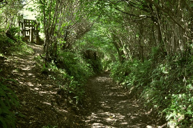 Castle Lane heading towards Nethercott