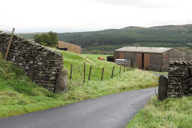 Farm road at Halsteads