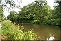 SU9947 : River Wey / Wey Navigation south of the railway bridge by N Chadwick