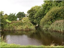 J3731 : The confluence of the Shimna and Burren rivers in Islands Park by Eric Jones