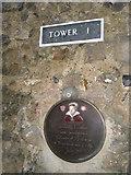 TM2863 : Plaque inside Framlingham Castle by Basher Eyre