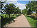 SK8955 : Entrance to Walnut Farm by Jonathan Thacker