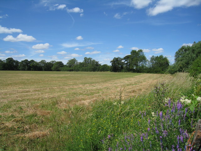 Typical Hampshire countryside