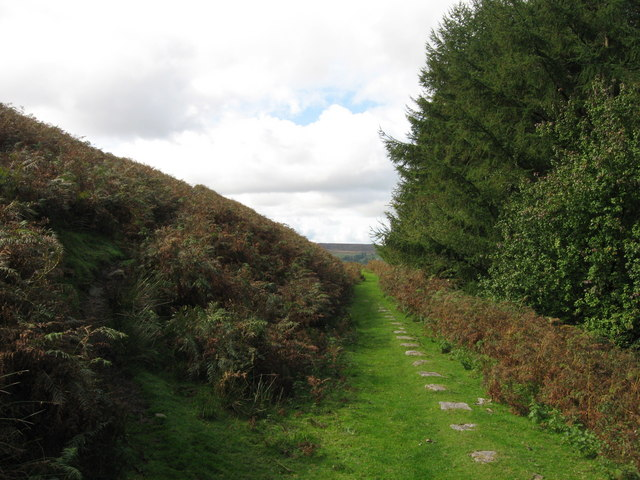 Hill's Tramroad on the Blorenge