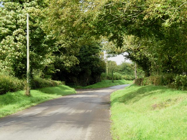 Back road in Brownstown, Co. Meath