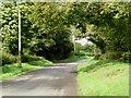 N9566 : Back road in Brownstown, Co. Meath by JP
