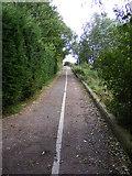 TG3204 : Wherryman's Way near Rockland Dike by Glen Denny