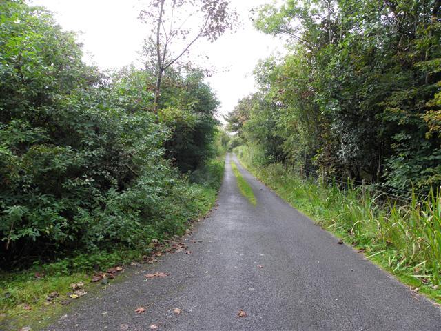 Road at Tawnaghlaghan