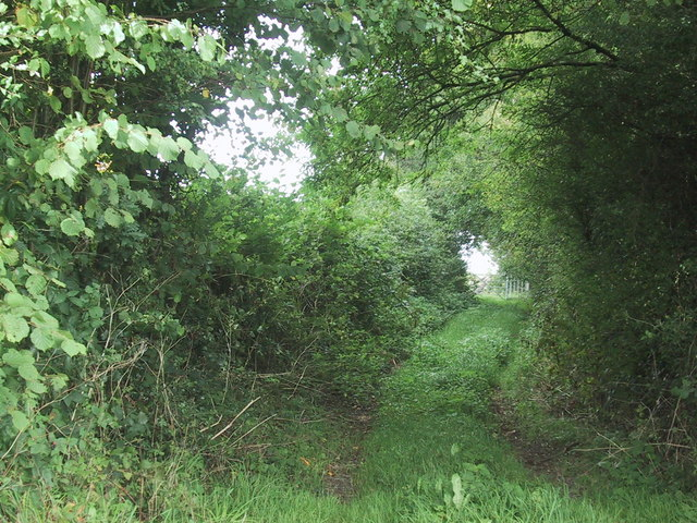 Footpath along access to North Leigh