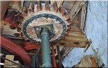 TF7632 : Great Bircham Windmill - Stone Nut by Ashley Dace