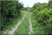 TR3140 : North Downs Way on Western Heights by Chris Heaton