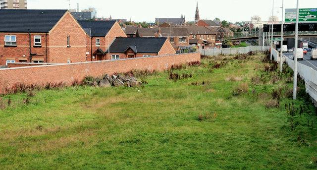 Westlink grass, Belfast