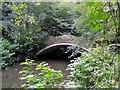 NZ2567 : Footbridge, Jesmond Dene by Andrew Curtis