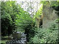 NZ2567 : Ouse Burn at Jesmond Dene Mill by Andrew Curtis