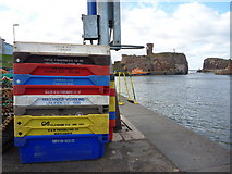 NT6779 : Coastal East Lothian : Fishboxes at Victoria Harbour, Dunbar - Saturday 25th September 2010 by Richard West