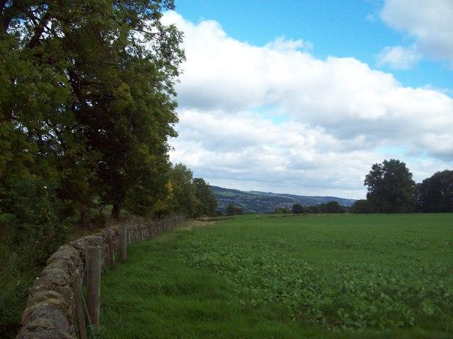 Farmland near Birchover and Upper Town