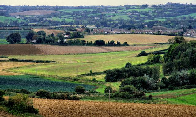 Fields near Newtownards (1)