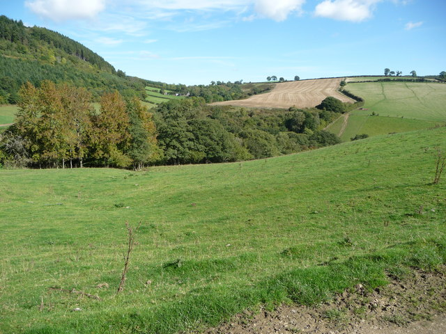 Early Autumn below Sunnyhill