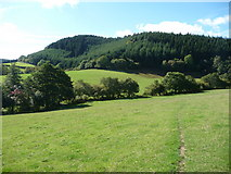 SO3283 : Steppleknoll from a footpath below Sunnyhill by Jeremy Bolwell