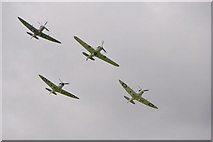 SU8707 : Hurricane and Spitfires, Goodwood Revival 2010 by Christine Matthews