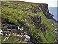 NG1450 : Allt an Ris waterfall by Richard Dorrell
