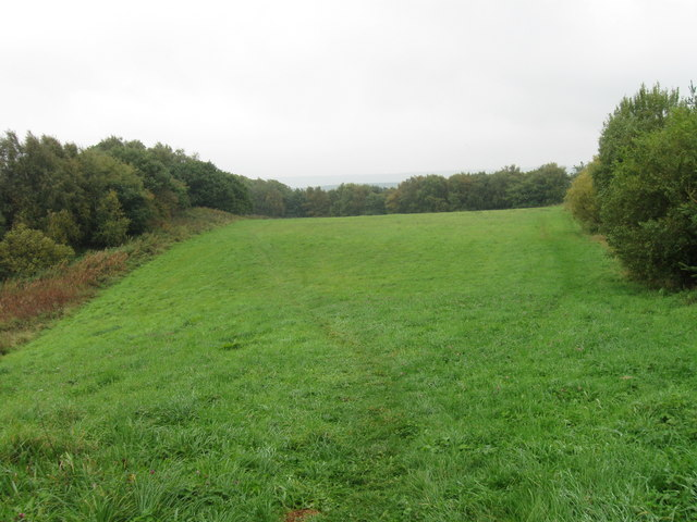 Field north of Acton Dene