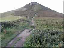 NZ5812 : Path leading to Roseberry Topping from the east by Peter S