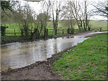 TR1955 : River Nailbourne crosses the Old Palace Road by Nick Smith
