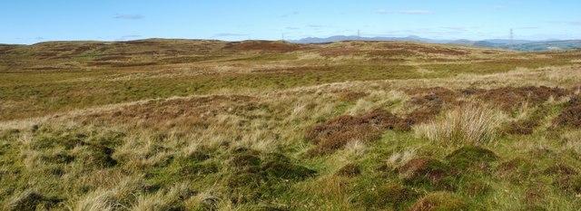 Possible hut circle on Burnhead Moor