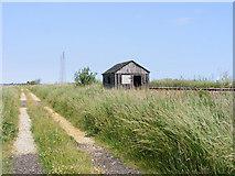 TM4599 : Farm track and railway beside the New Cut by Glen Denny
