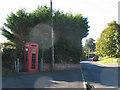 SX9677 : Vandalised phone box by Stephen Craven