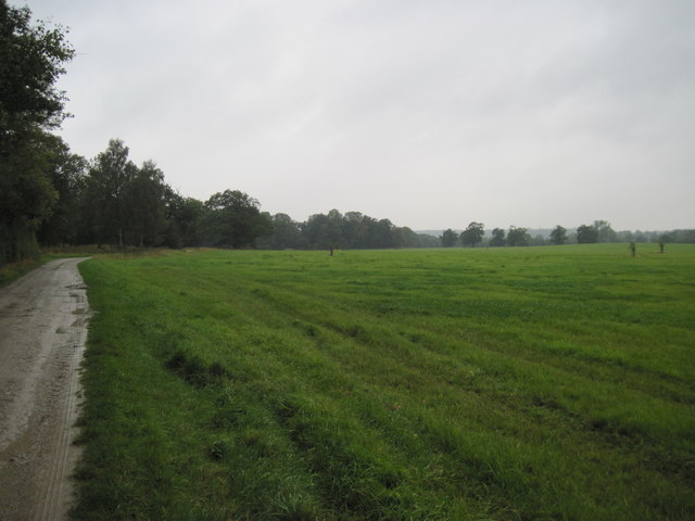 Track  towards  Coneysthorpe