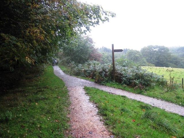 Path junction near Scugdale Beck
