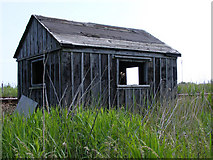 TM4599 : Derelict permanent way hut by Glen Denny