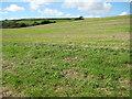 SW8633 : Farmland near Porth Farm by Philip Halling