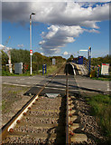 TA0623 : Barrow Haven - Level Crossing and Station by David Wright
