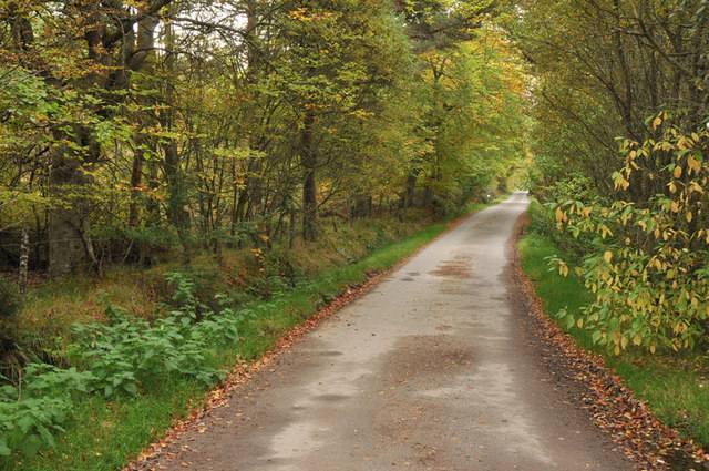Road from Taindore to Drynie