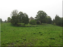 SU8518 : St Mary's Church and graveyard Bepton by Dave Spicer