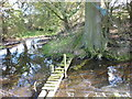 TA2137 : A bridge across  the moat by Ian S