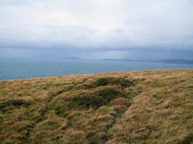 Heathland above Cardigan Bay