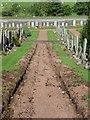 NS8463 : Kirk o' Shotts graveyard path by kim traynor